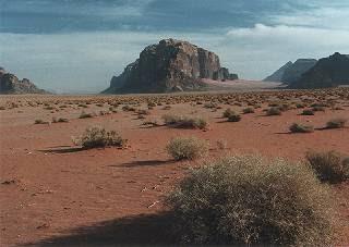 Wadi Rum desert vista