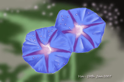 ... in his painting. Ipomoea is commonly known as Morning Glory
