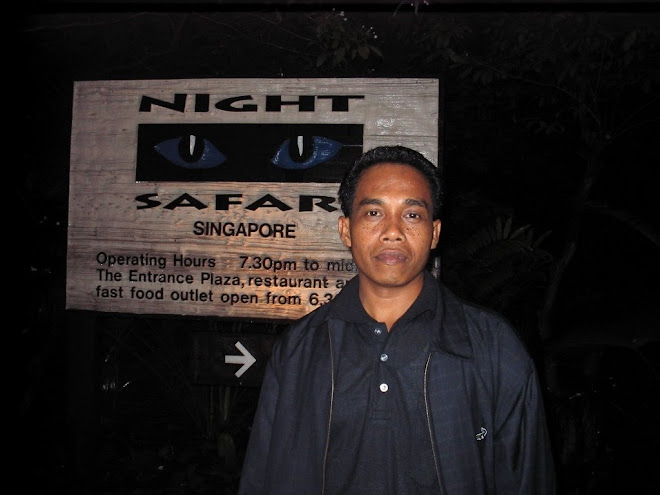 Night Safari Spore
