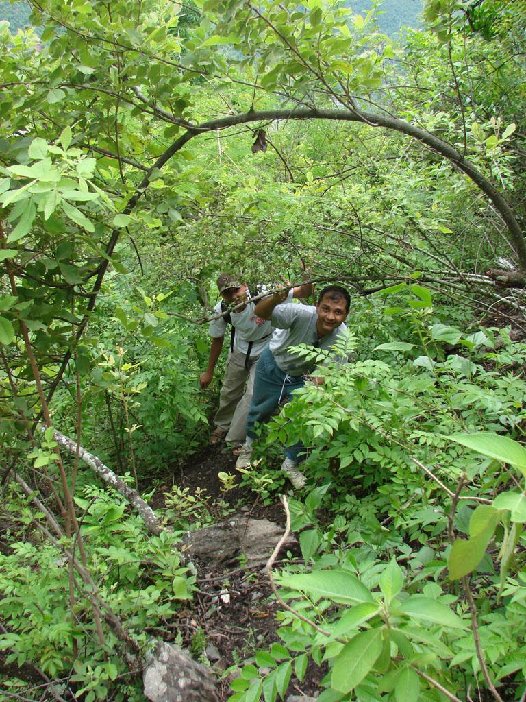 [Nepalthok+to+Dumjha+to+Nepalthok,+Sunday,+Aug+12,+2007+125.jpg]