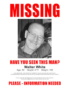 aimee Examples of Missing Posters