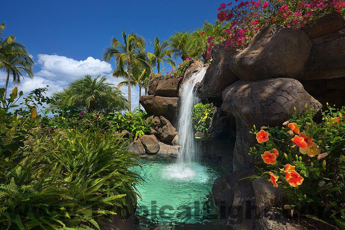 Tropical Paradise Waterfalls - Hot Girls Wallpaper