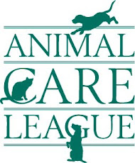 We love the Animal Care League!