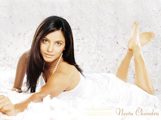 Neetu Chandra Bollywood Actress and Model Wallpaper