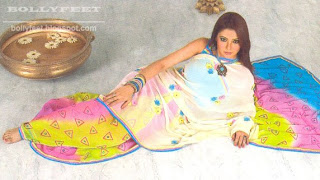 Beautiful Indian Model in Saree