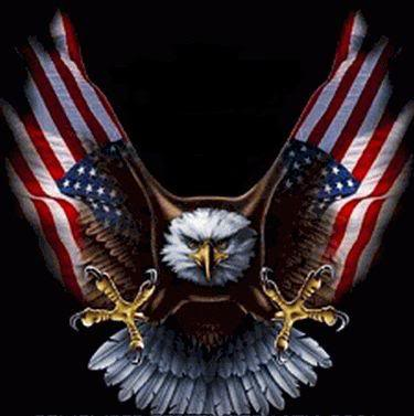 meet patriot unit Eagle  american flag