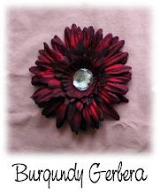 Burgundy Gerbera