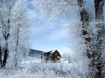 winter desktop wallpaper, free winter desktop wallpaper, winter scene