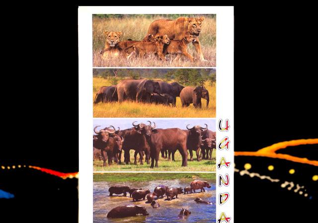 Animales de Uganda