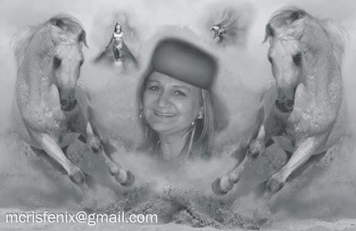 Art Cristina Lima
