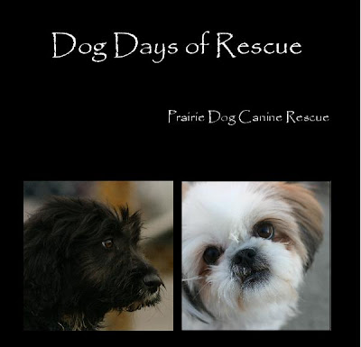 blurbbook The Dog Days of Rescue