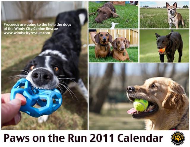 cover 2011 Calendars!