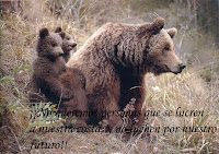 Por nuestra fauna