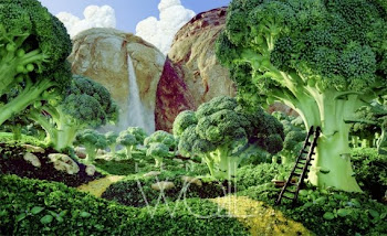 Brocoli forest - Carl Warner