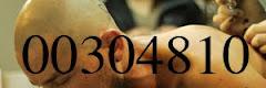 00304810 (THE KoDIGo)