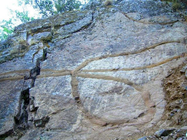[fosiles-gusanos-gigantes-cabañeros.JPG]