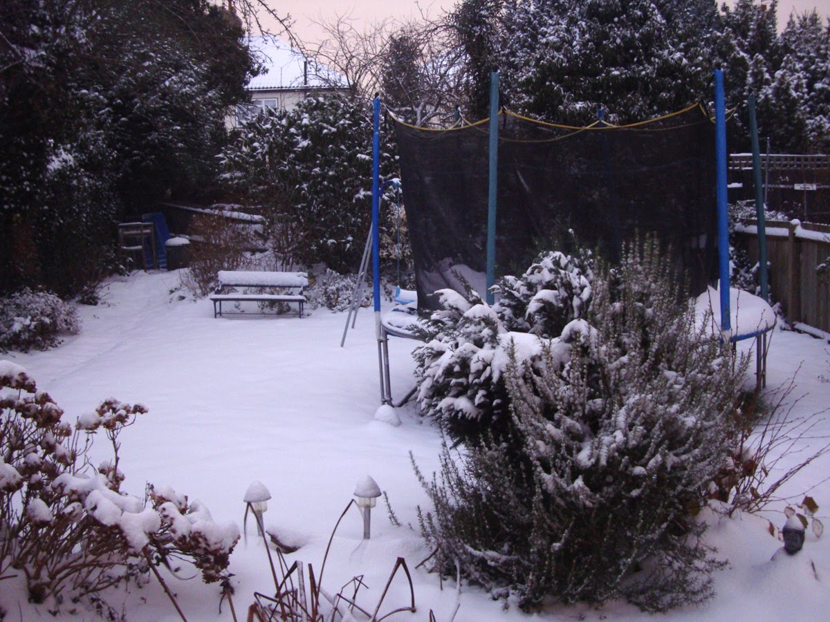 Snow Forecast South Island Nz