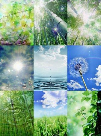windows mobile nature wallpaper pack 240 320 20 beautiful wallpapers ...