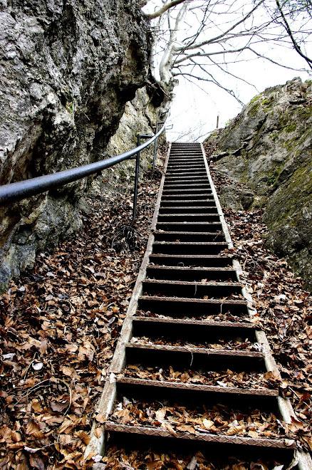 stopnice na poti na Osojnico nad Blejskim jezerom