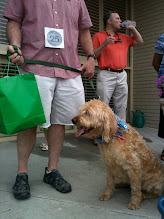Neighborhood Dog Show - Jun 10
