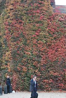 Intense colours at St. James Park
