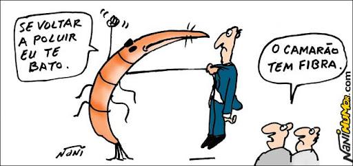 Dos jornais: Fibra de camarão ajuda a despoluir. diz Unicamp