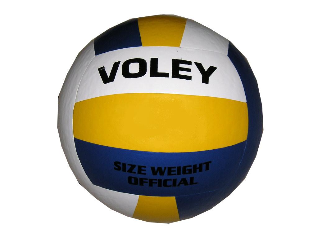 concepto del voleibol: