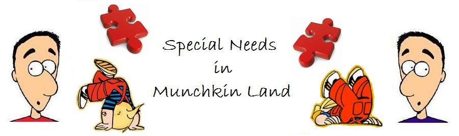 Special Needs in Munchkin Land