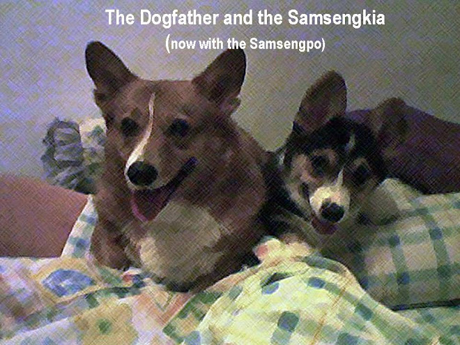 The Dogfather and the Samsengkia