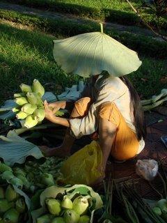 Vendedora de flores de loto