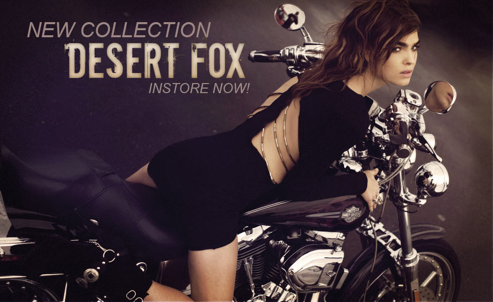 http://3.bp.blogspot.com/_FRrVwSR7gdk/TOYMothNr5I/AAAAAAAABQU/IdOEAWChHXs/s1600/stylestalker+desert+fox.jpg