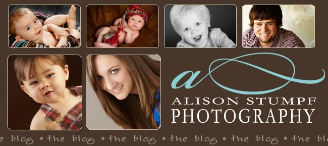 Alison Stumpf Photography