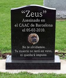 Zeus, no nos olvidamos...