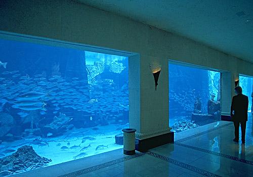 Mall Of Emirates Atlantis