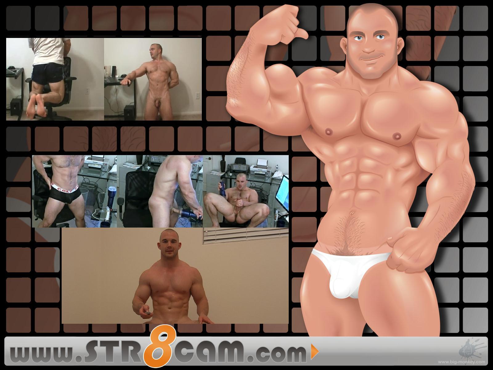 http://3.bp.blogspot.com/_FSVTydO8sOM/TCWwm-o4eAI/AAAAAAAAFOs/cS4kaibyeZA/s1600/STR8cam%2520wallpaperblackd.jpg