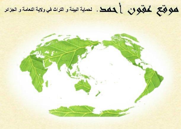 حماية البيئة و التراث في الجزائر