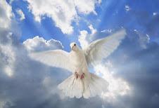 Espiritu Santo Ven!!!