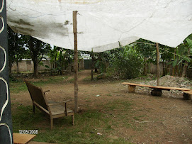 Sala Nozadu (Nojo)