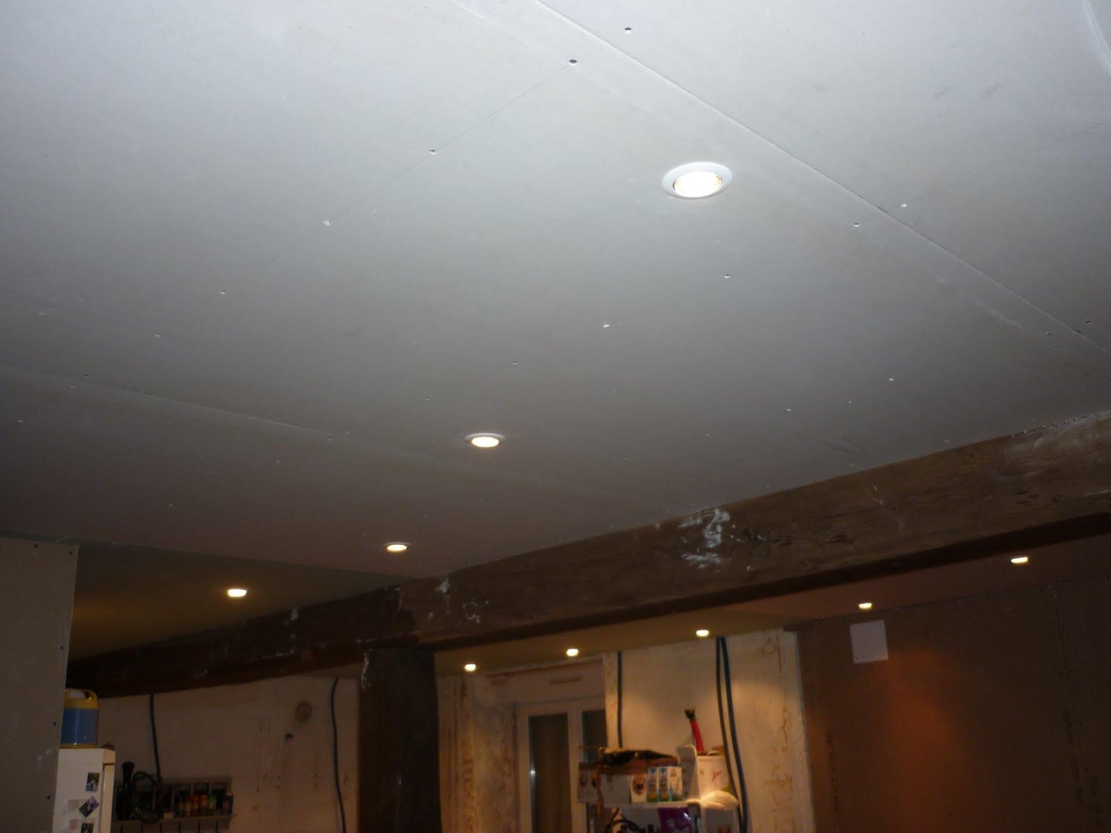 Loulou et louloute voici les faux plafond salle manger for Faux plafond avec spot
