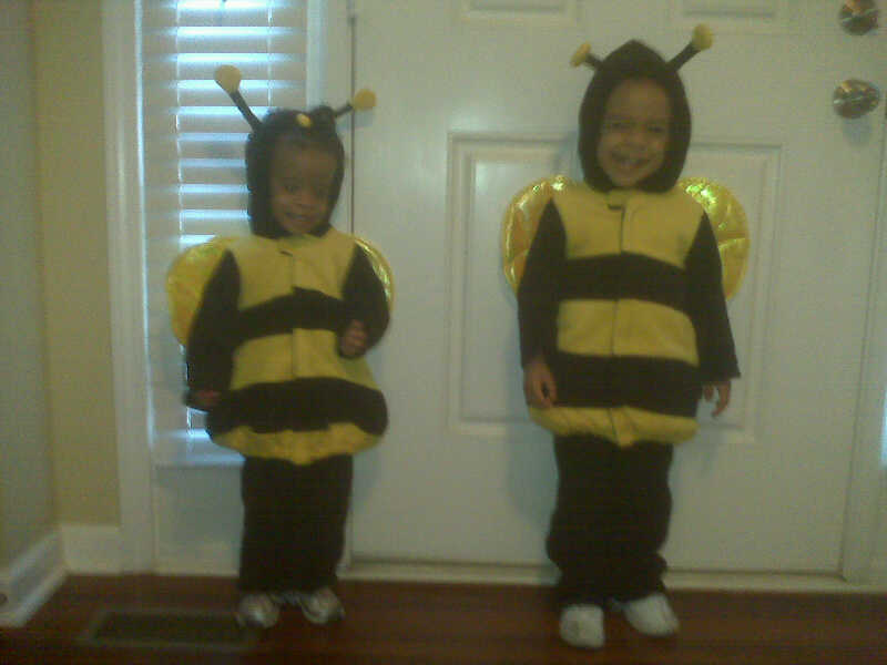 aniyah the little bees