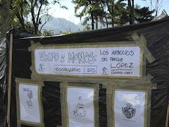 """Esta fue la expo de monos que puse en el parque López, cuando lo quería """"embellecer"""" Emilio"""