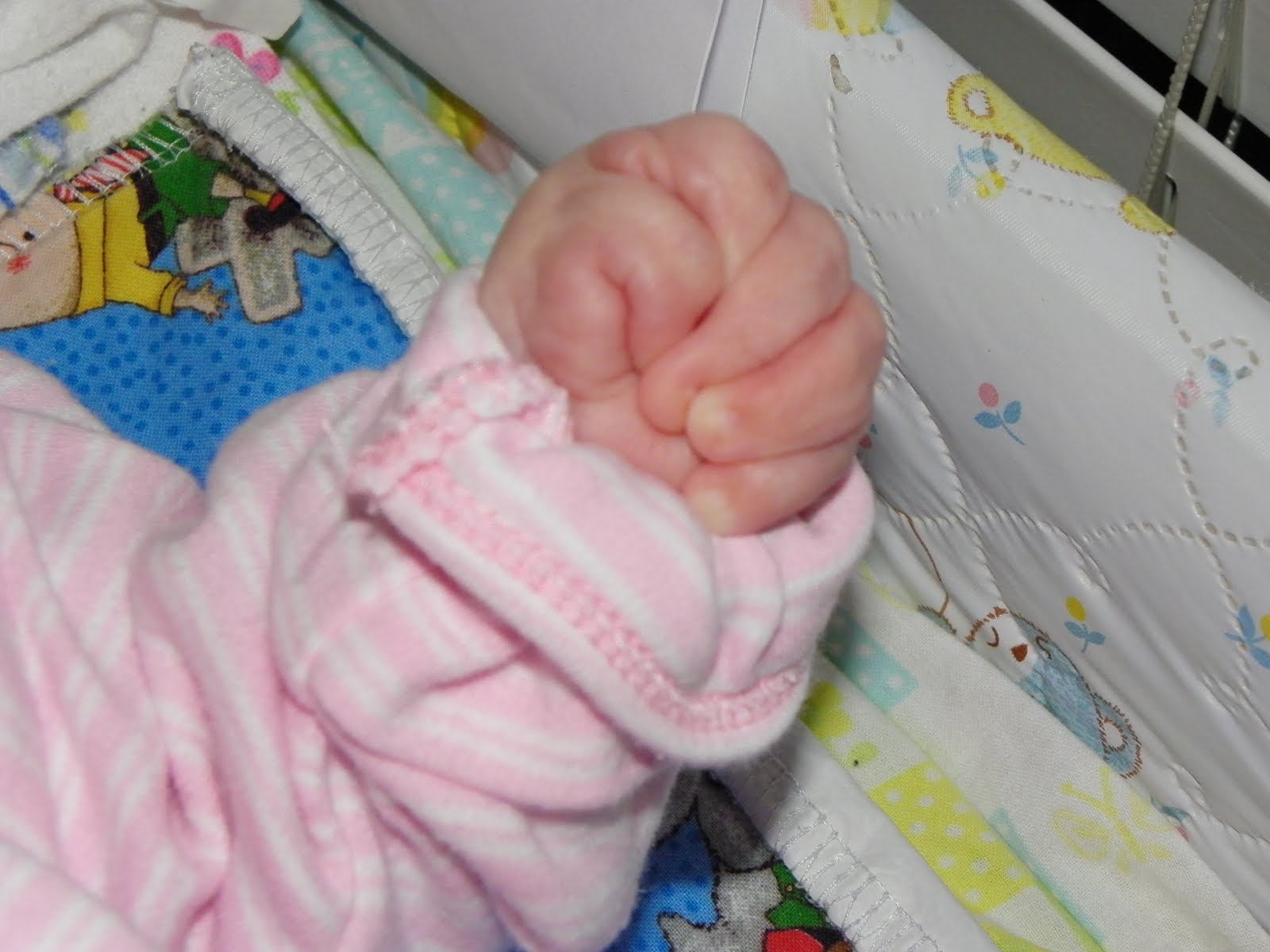 babies with fisted hands