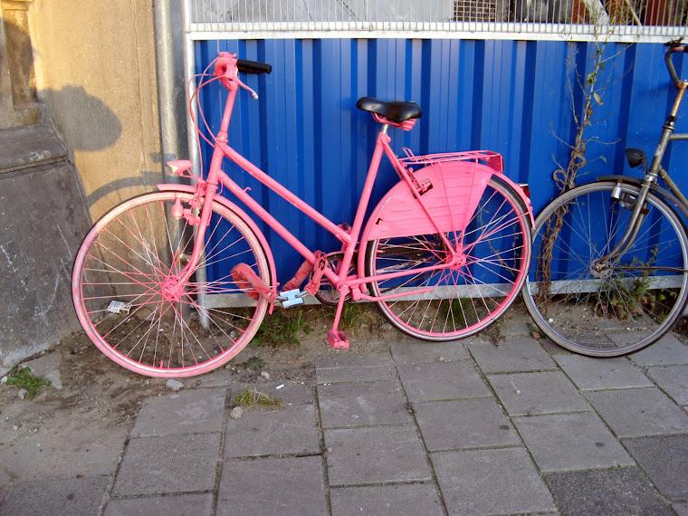bicicletas de todos los colores