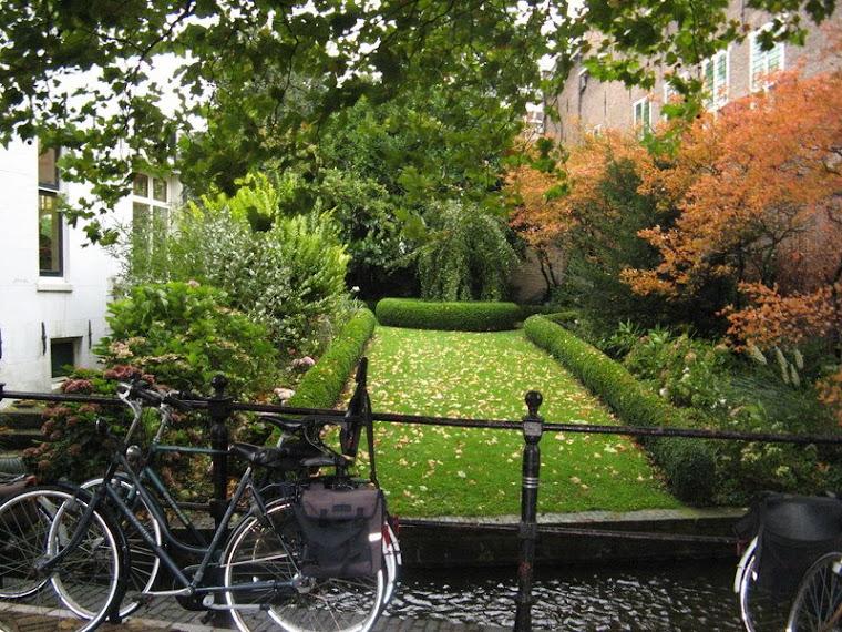 Verde todo en Holanda