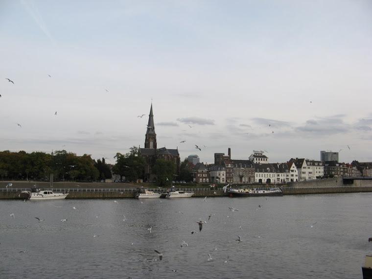 lago con ciudad al fondo