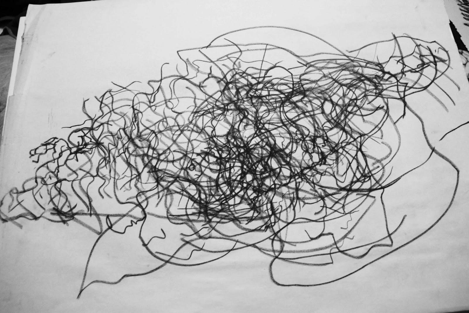 Contour Line Drawing Shell : Beau hestekin blind contour drawings