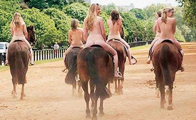 Como disse .a feira do cavalo na Golegãvale bem a pena ir