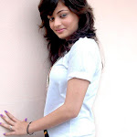 Sneha Ullal In A New Tamil Movie