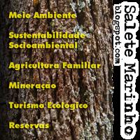 Salete Marinho