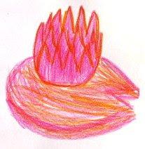 desenhos de um nenúfar